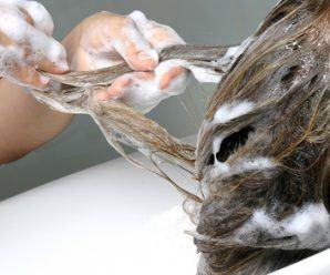 Pflege der Kopfhaut und Haare