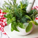 EU-Richtlinie verbietet Teil der traditionellen pflanzlichen Heilmittel
